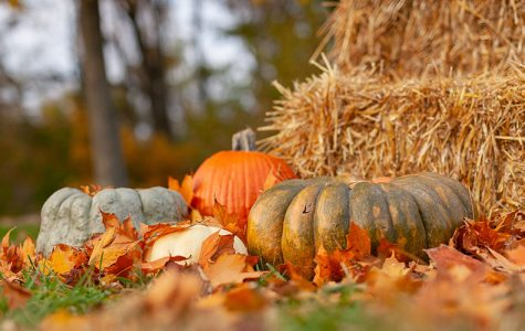 Top 10 Best Things About Autumn