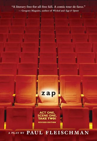 Why I Loved Being in Zap!