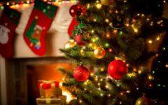 Activities to do Over Christmas Break